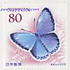 120209poscro_send0155_jp2386572