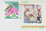 120602poscro_send0227_jp2762272
