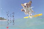 120718poscro_send0261_jp2913951