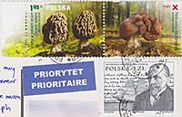 130520poscro_receive0352_pl6862762