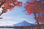 140421poscro_send0542_jp5262011