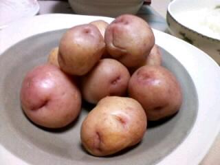 これでもジャガイモです